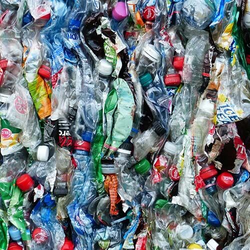 Green Recycle Group   Plastic Recycling Company   Plastic Bottles